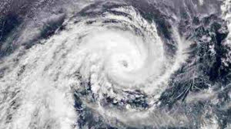 """Der Tag nach """"Sabine"""" – Wer zahlt für die Sturmschäden?"""